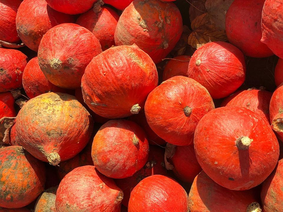 Pumpkins, Fruit, Food, Autumn, Fruits, Orange, Harvest