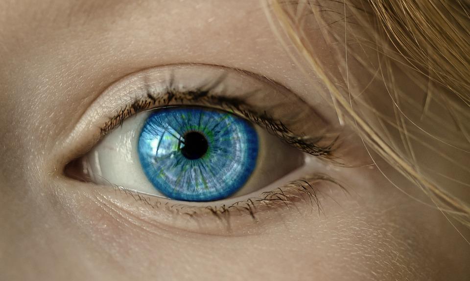 Eye, Blue Eye, Iris, Pupil, Face, Close, Lid, Eyelashes