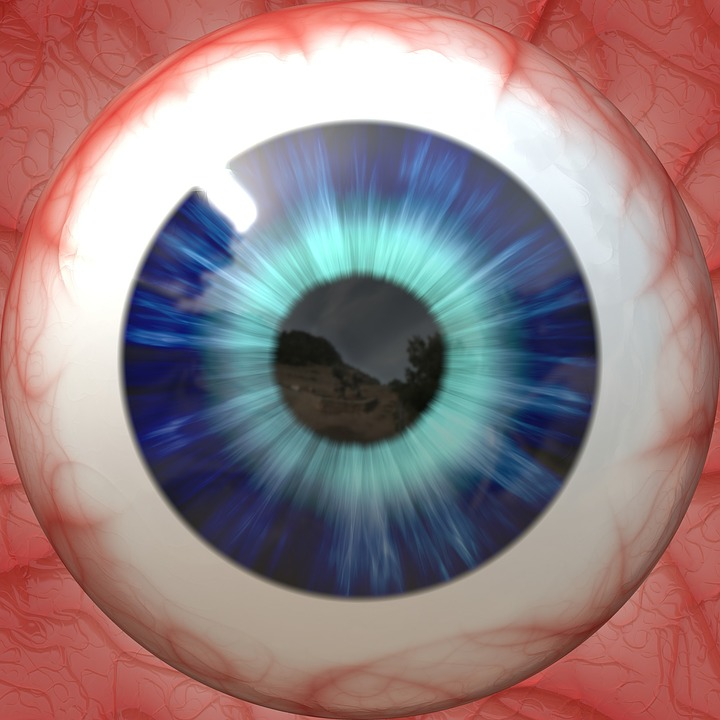 Free photo Pupil Vision Iris Eyeball Anatomy Eye Sight - Max Pixel