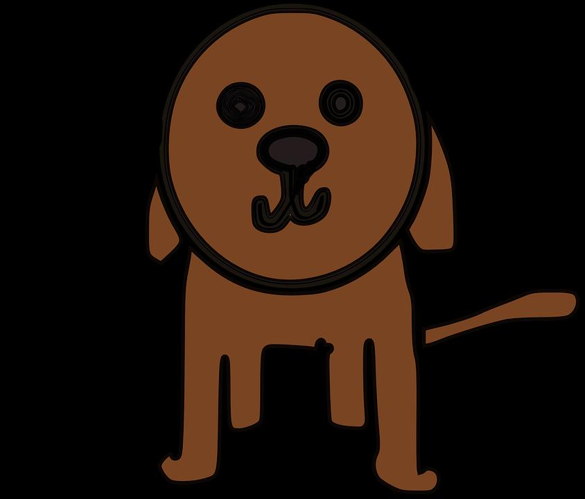 Puppy, Dog, Beagle, Animal, Brown