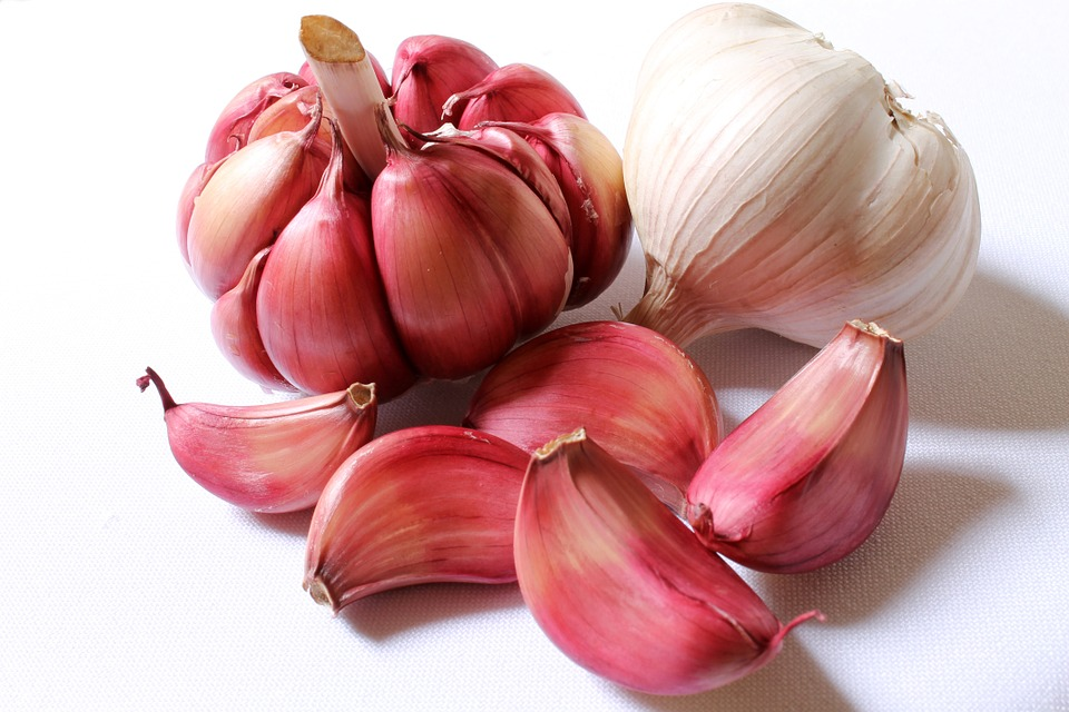 Garlic, Purple Garlic, Head Of Garlic, Clove Of Garlic