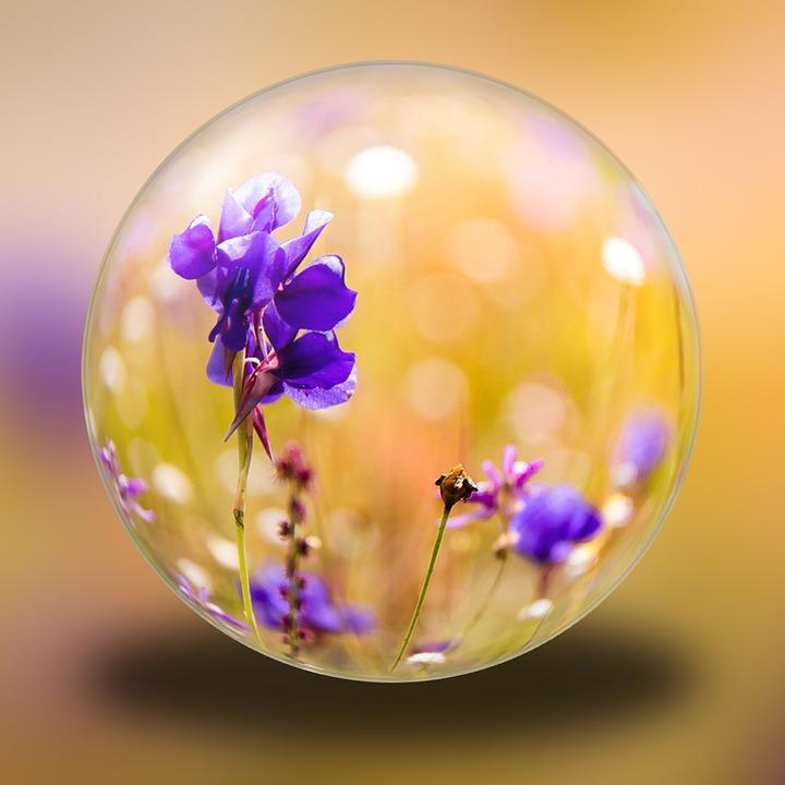 Glass Ball, Purple, Blossom, Bloom, Decoration, Summer