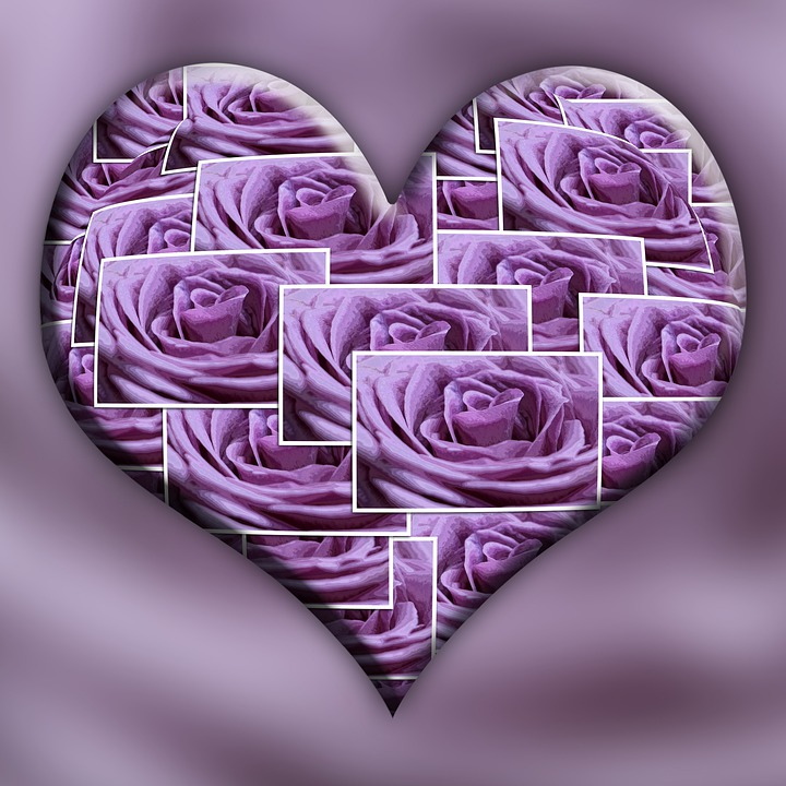 Heart, Purple, Roses, Mother's Day, Love, Romance