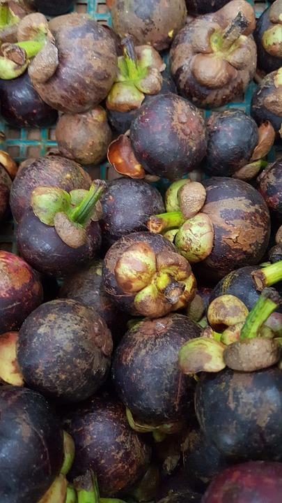 Purple Mangosteen, Fruits, Mangosteen, Tropical, Ripe