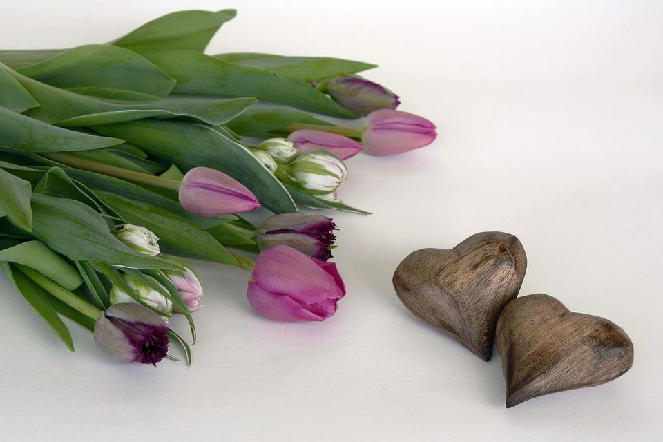 Tulips, Flowers, Heart, Wood, Brown, Violet, Purple