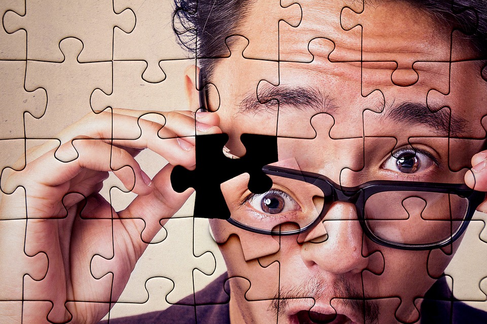 Puzzle, Jigsaw, Jigsaw Puzzle, Puzzle Piece, Assembly