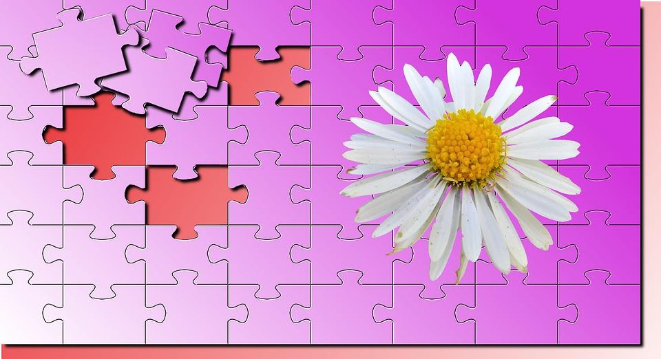 No Person, Wallpaper, Puzzle, Puzzles, Flower, Close Up