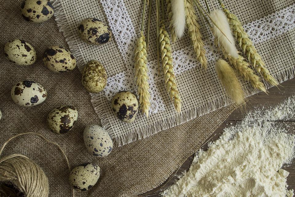 Background, Fabric, Cotton, Wheat, Eggs, Quail, Flour