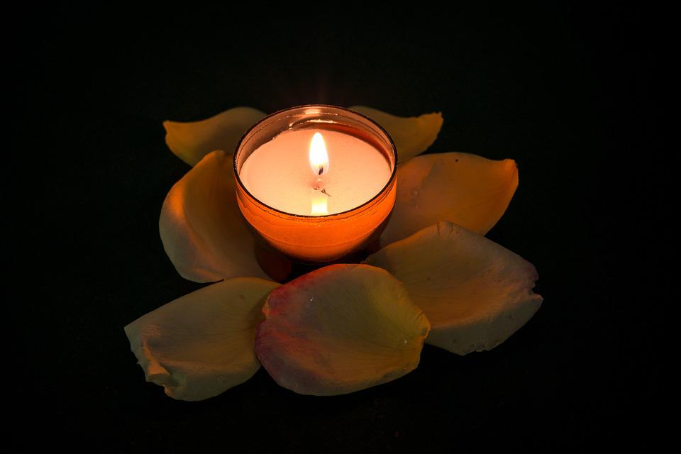 Candle, Rose, Tealight, Quiet, Contemplative, Rest