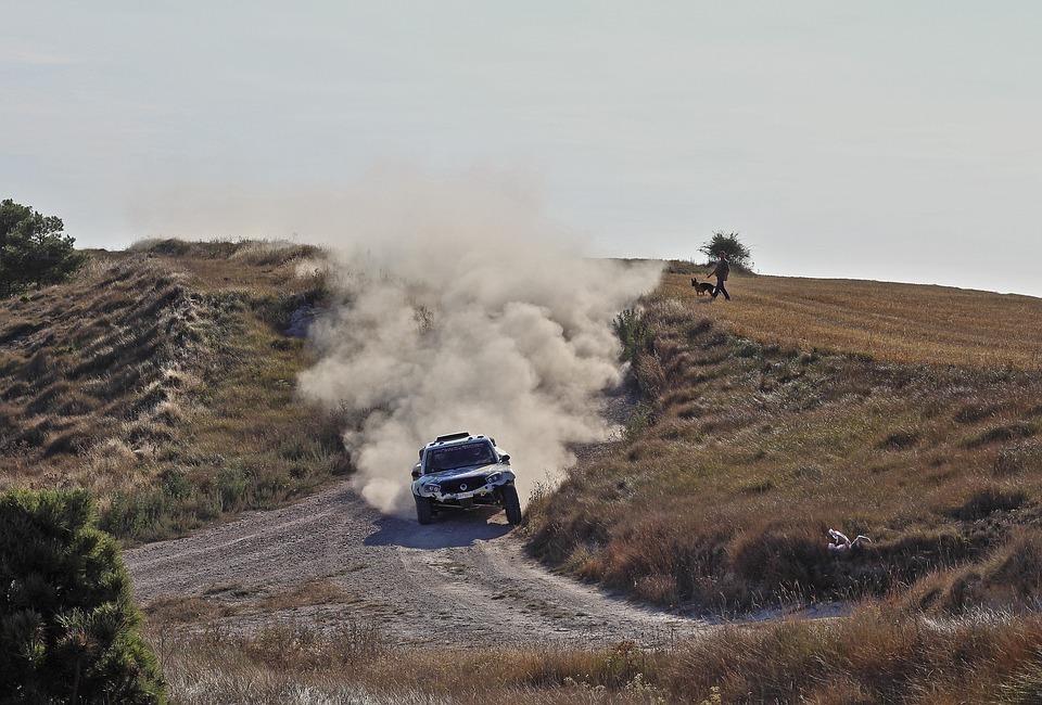 Rally, Cars, Car, Vehicle, Auto, Speed, Racing, Career