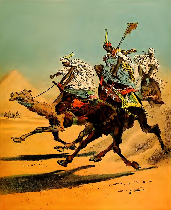 Camels, Racing, Desert, Sand, Dunes, Sand Dunes, Yellow
