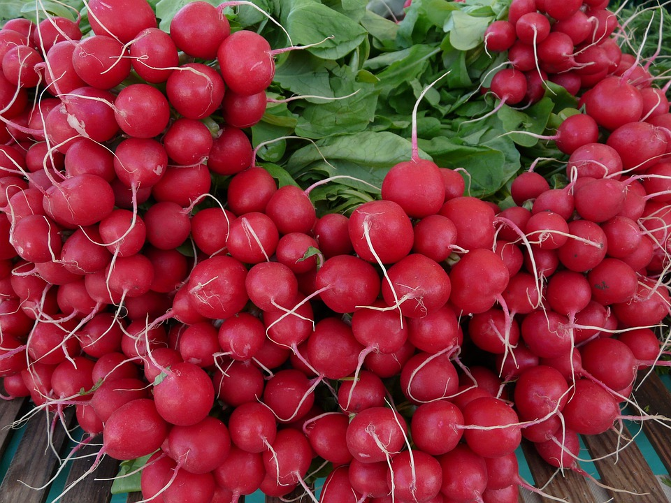Radishes, Vegetables, Food, Red, Vitamins, Healthy, Eat