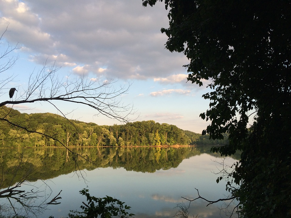 Radnor Lake, Lake, Tranquil, Trail, Nature, Tennessee