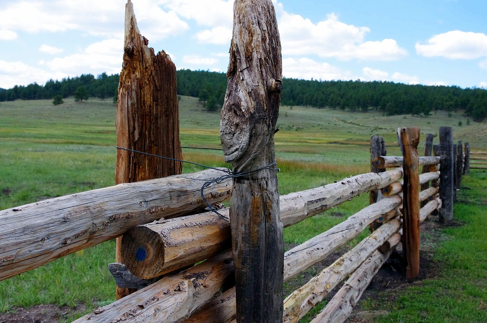 Post And Rail Fence, Rail, Fence, Rustic, Post, Rural