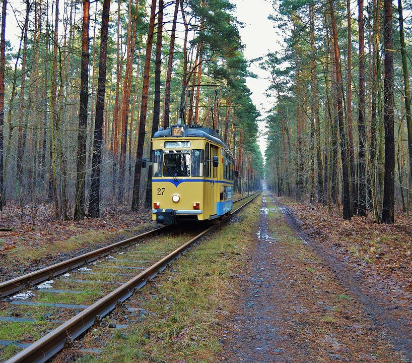 Tram, Railcar, Forest Track, Woltersdorf - Berlin