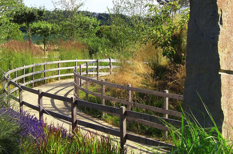 Away, Nature, Green, Plant, Railing