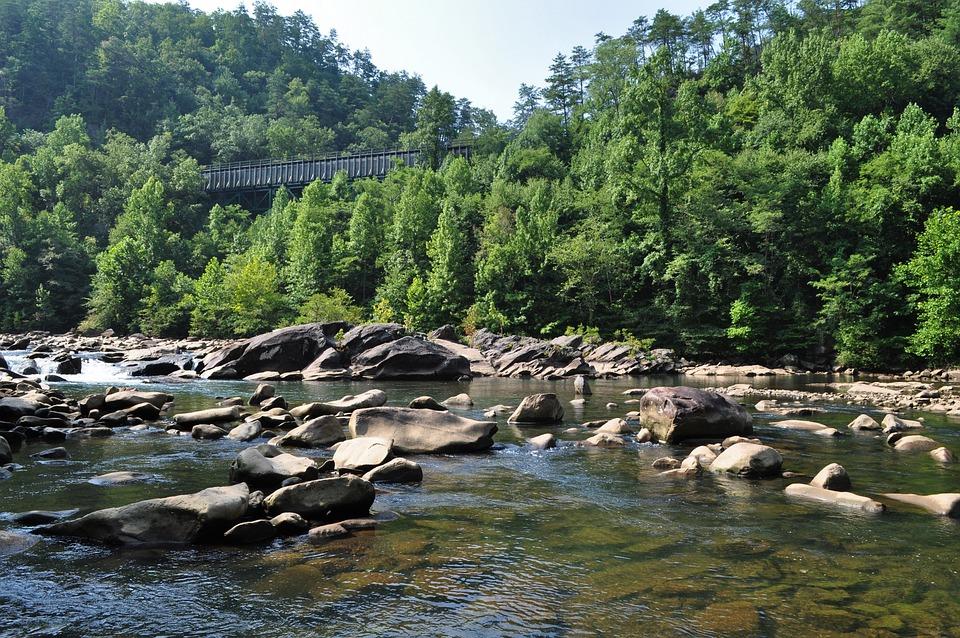 Nature Reserve, River, Torrent, Railway, Current, Rocks