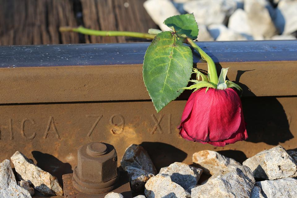 Sad Red Rose, Railway, Lost Love, Touching