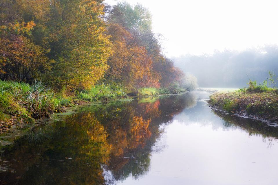 River, Fog, Rain, Autumn, Winter, Autumn Colours