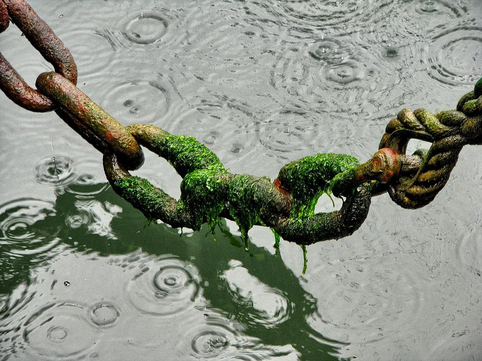 Chain, Rope, Port, Water, Rust, Rain