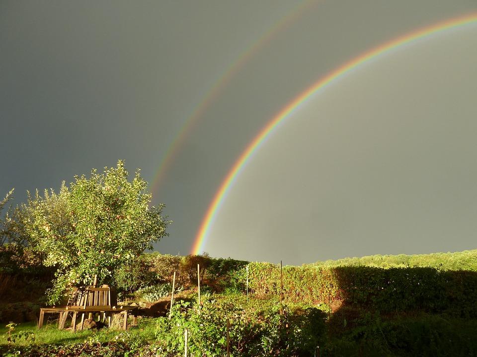 Rain, Rainbow, Double