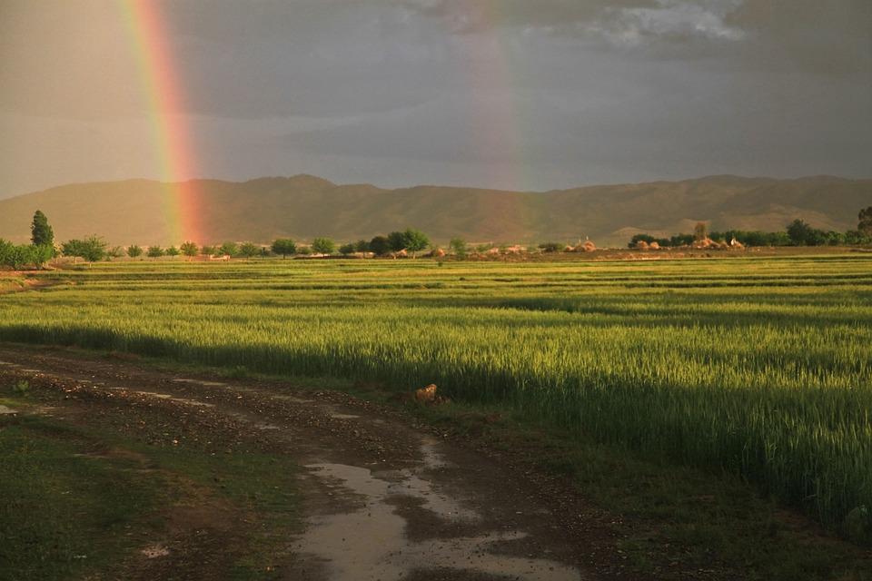 Rainbow, Field, Afghanistan, Weather, Horizon, Nature