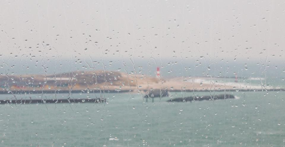 Rainy Holiday, Reggen Wet Disc, Window, Raindrop
