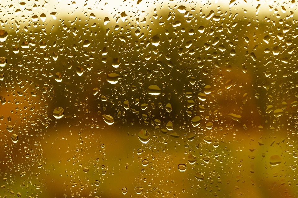 Rain, Raindrop, Window Glass, Wet, Water, Window