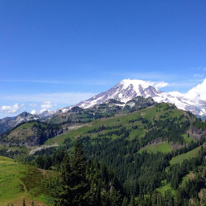 Mountain, Rainier, Northwest, Tatoosh, Meadow