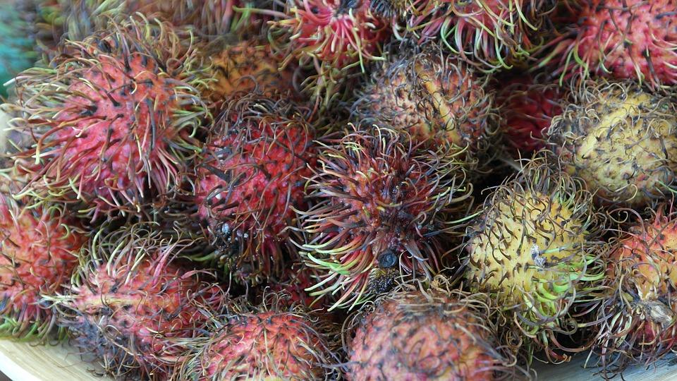 Rambutan, Fruits, Fruit, Delicious, Healthy, Vitamins