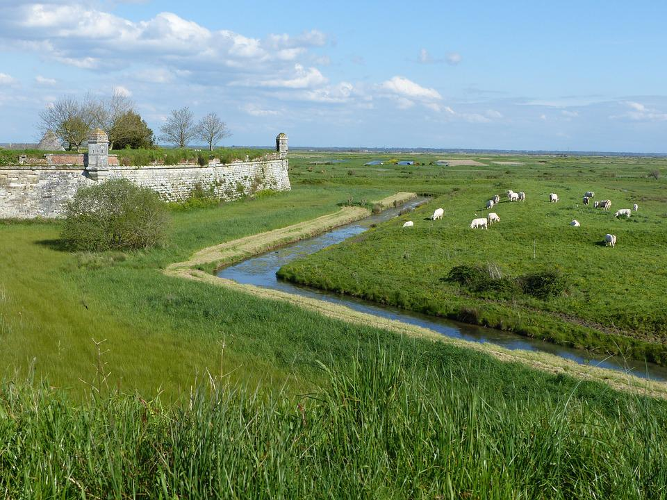 Channel, Ramparts, Cattle, Fortifications, Pierre