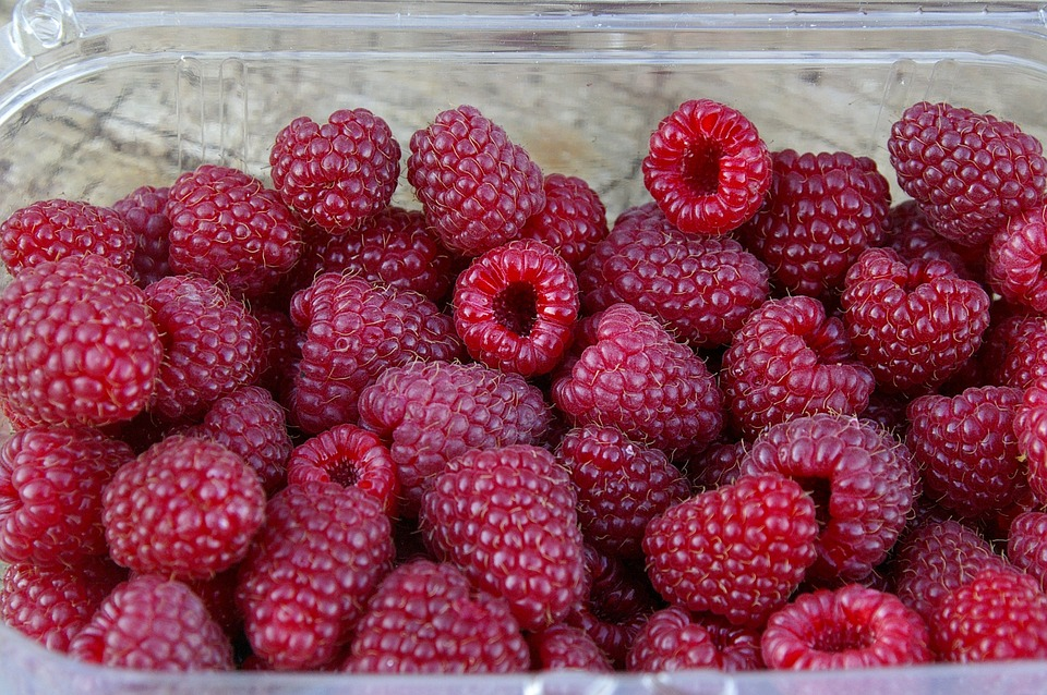 Raspberries, Berries, Harvest, Ripe, Red, Box, Plastic