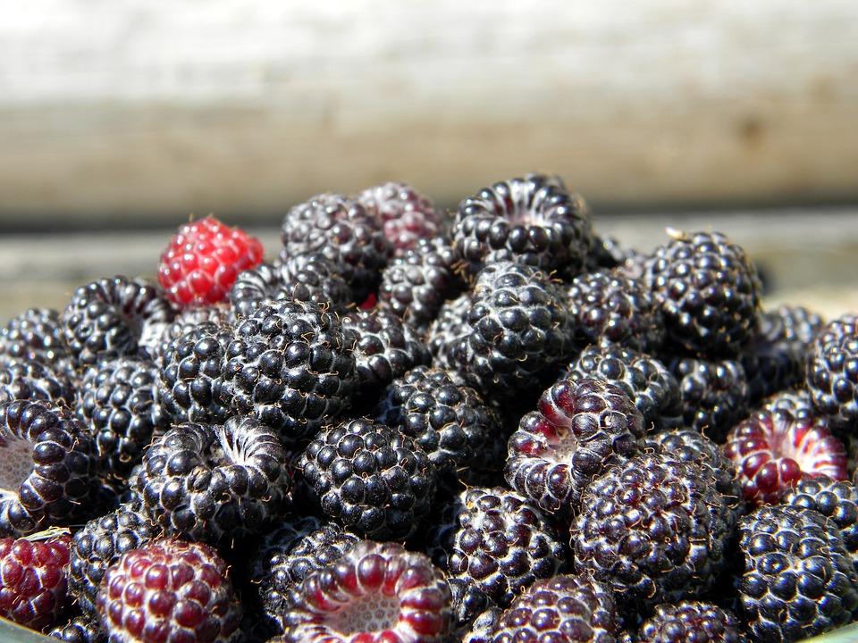 Raspberry, Black Raspberry, Ripe Raspberry, Berry