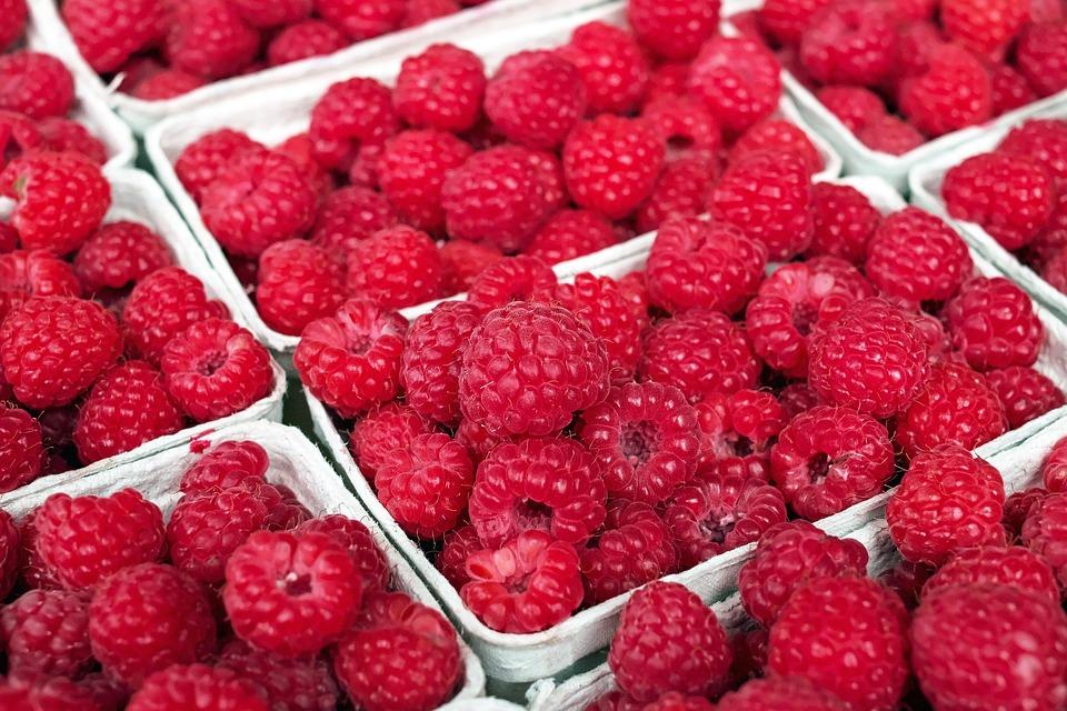 Raspberry, Berry, Fruit, Fruits, Red, Summer