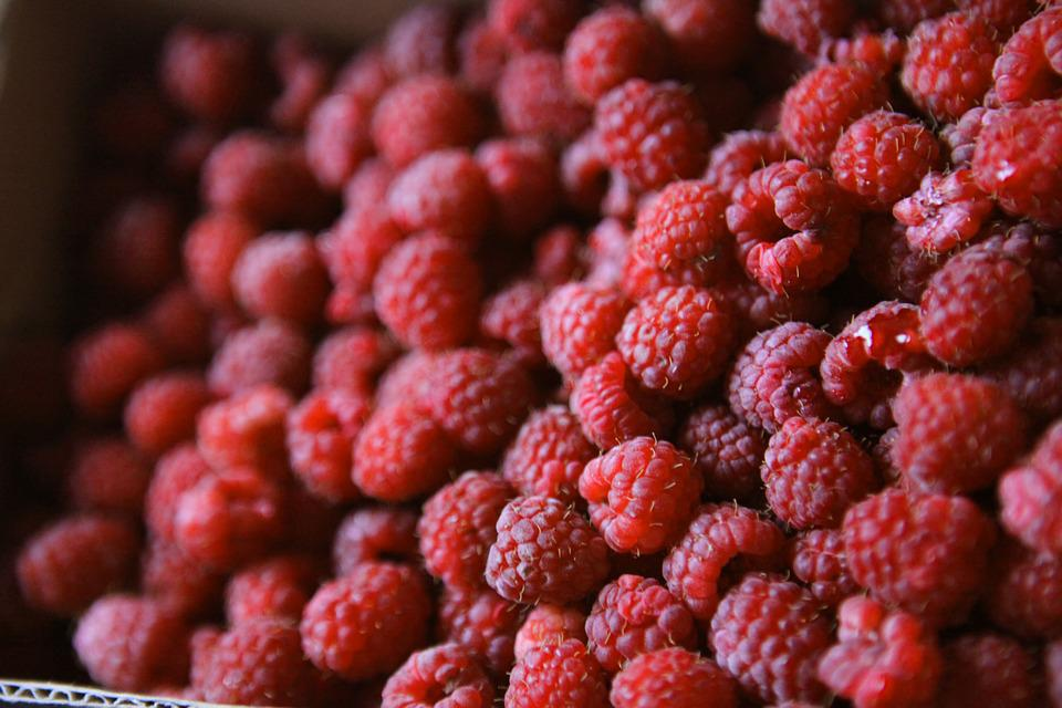 Raspberry, Summer, Berry, In The Summer Of, Red, Ripe