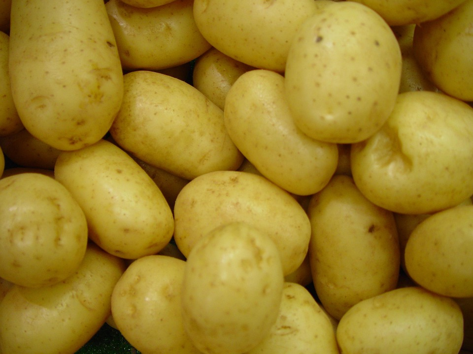Potatoes, Vegetables, Raw, Uncooked, Frisch, Vegetarian