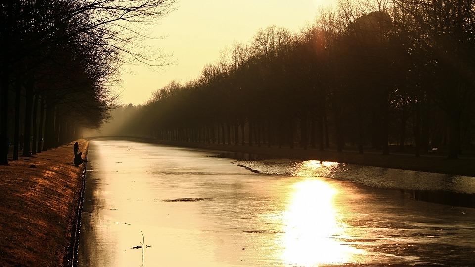 Sky, Sun, Water, Sunset, Tree, Rays, Evening Sky