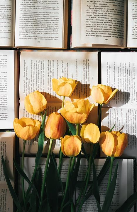 Tulips, Flowers, Books, Read, Page, Yellow Tulips