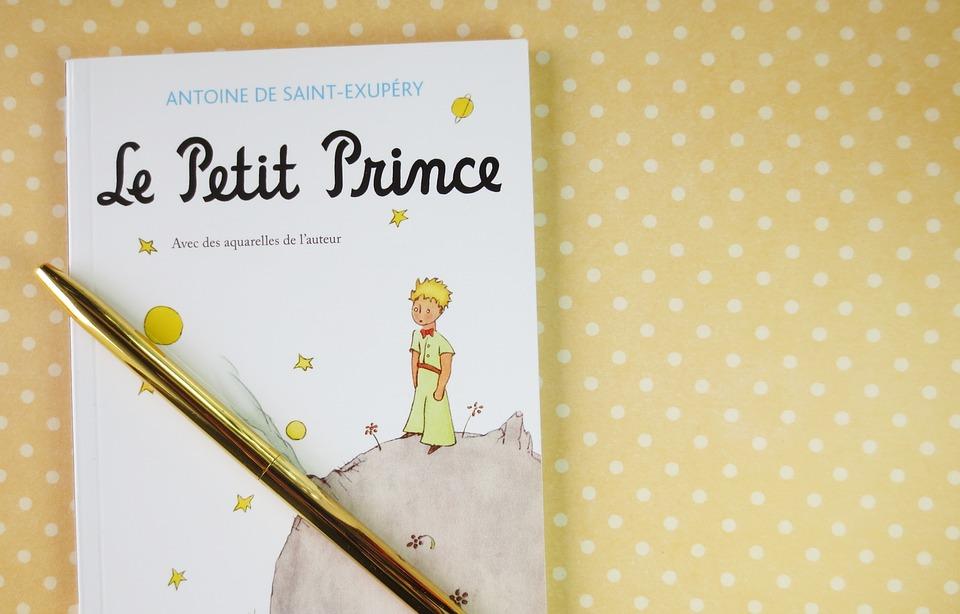 Pettite Prince, Books, Read, Book, Literary, Retro