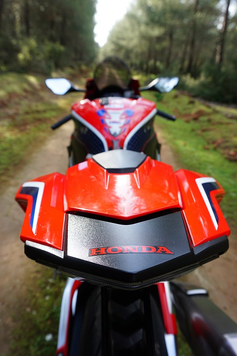 Motorcycle, Vehicle, Honda, Rear View, Mirrors, Forest
