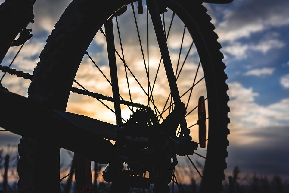 Bike, Mountain Bike, Spokes, Wheel, Rear Wheel, Circuit