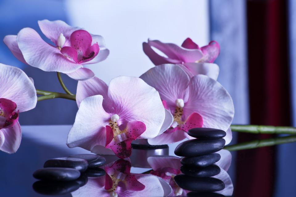 Massage, Relaxation, Stones, Wellness, Rest, Recovery