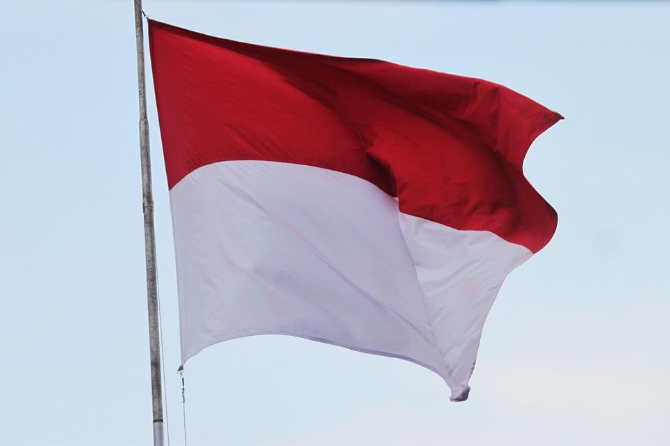Flag, Indonesian Flag, Red And White Flag, Aflutter