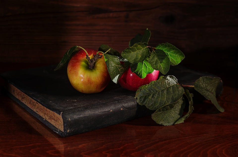 Apples, Notebook, Autumn, Leaves, Healthy, Red