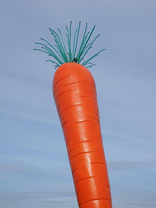Carrot, Red, Le Roi Carotte, Rosalie, Madaris