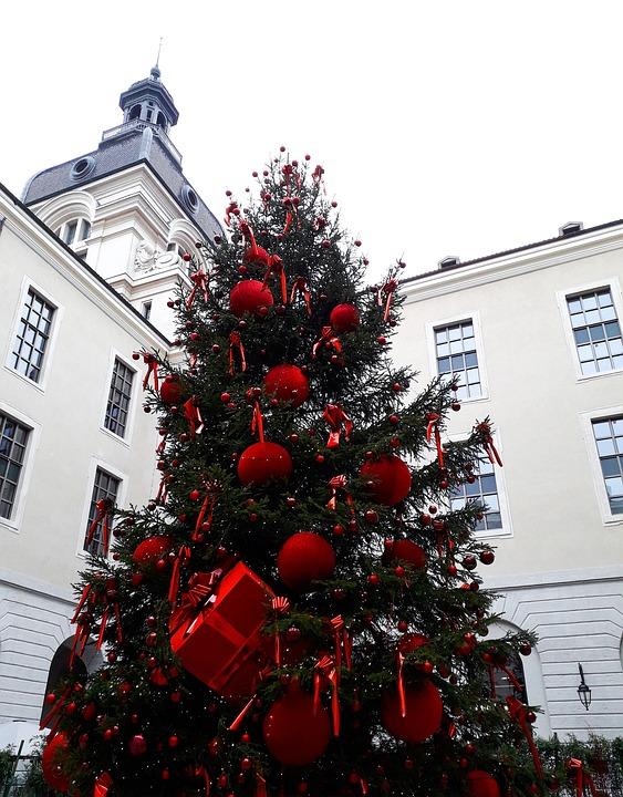 Christmas, Fir, Decoration, Red, Winter