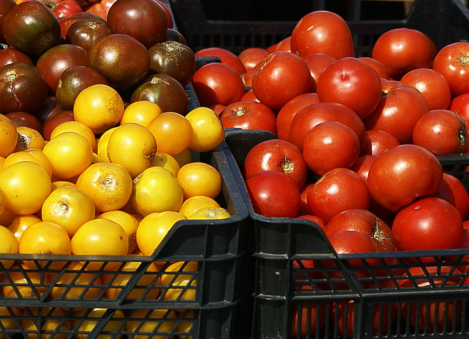 Tomatoes, Variety, Colorful, Red, Yellow, Brown, Fruit
