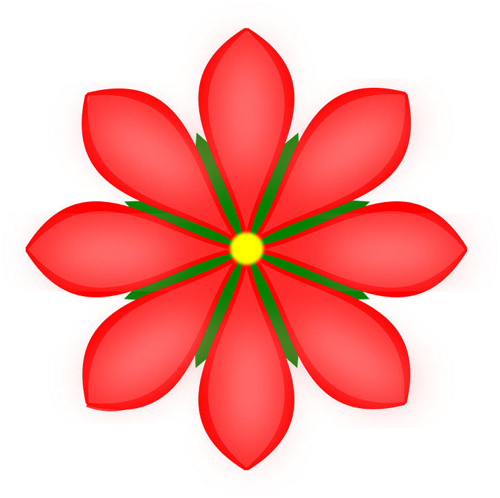 Flower, Daisy, Red, Plant