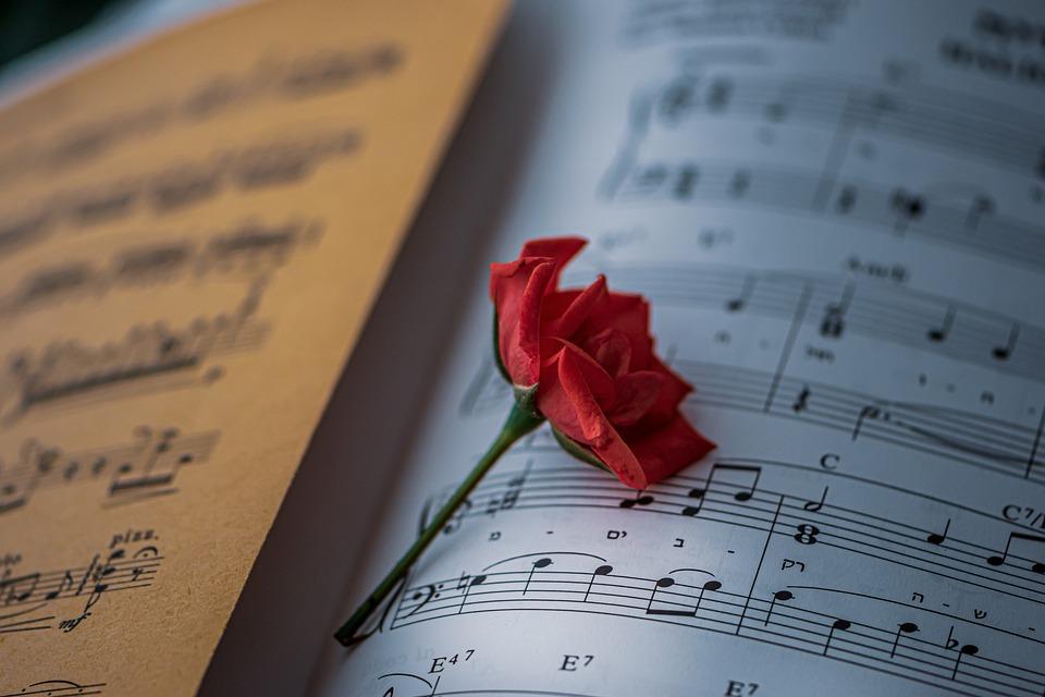 Sheet Music, Red Rose, Vintage, Elegant, Red Flower