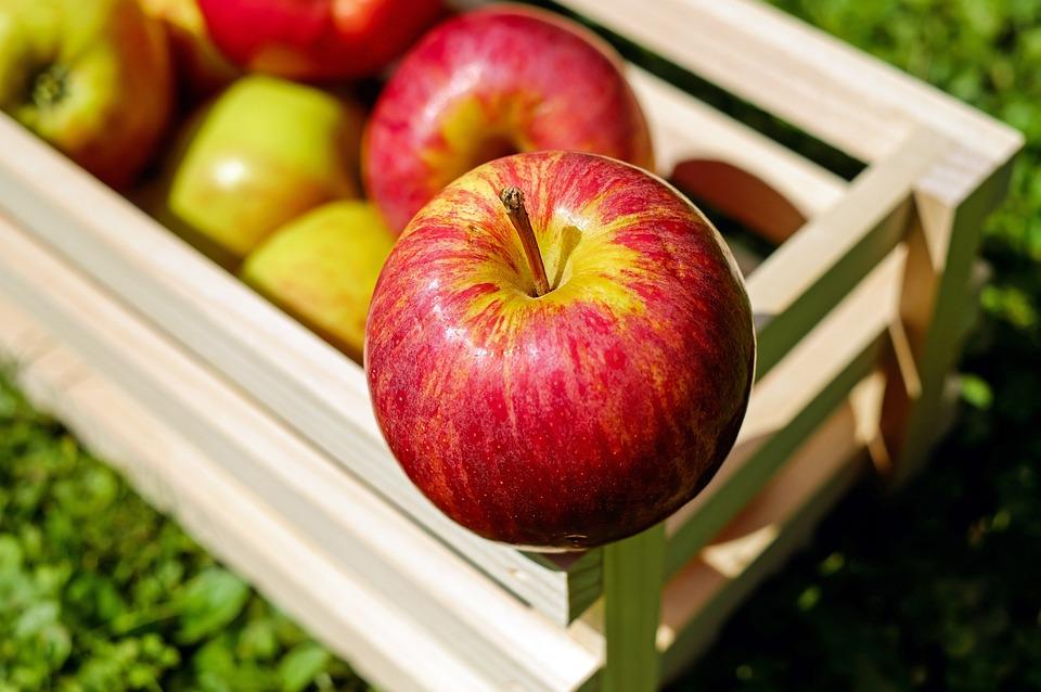 Apple, Red, Fruit, Fruits, Frisch, Harvest
